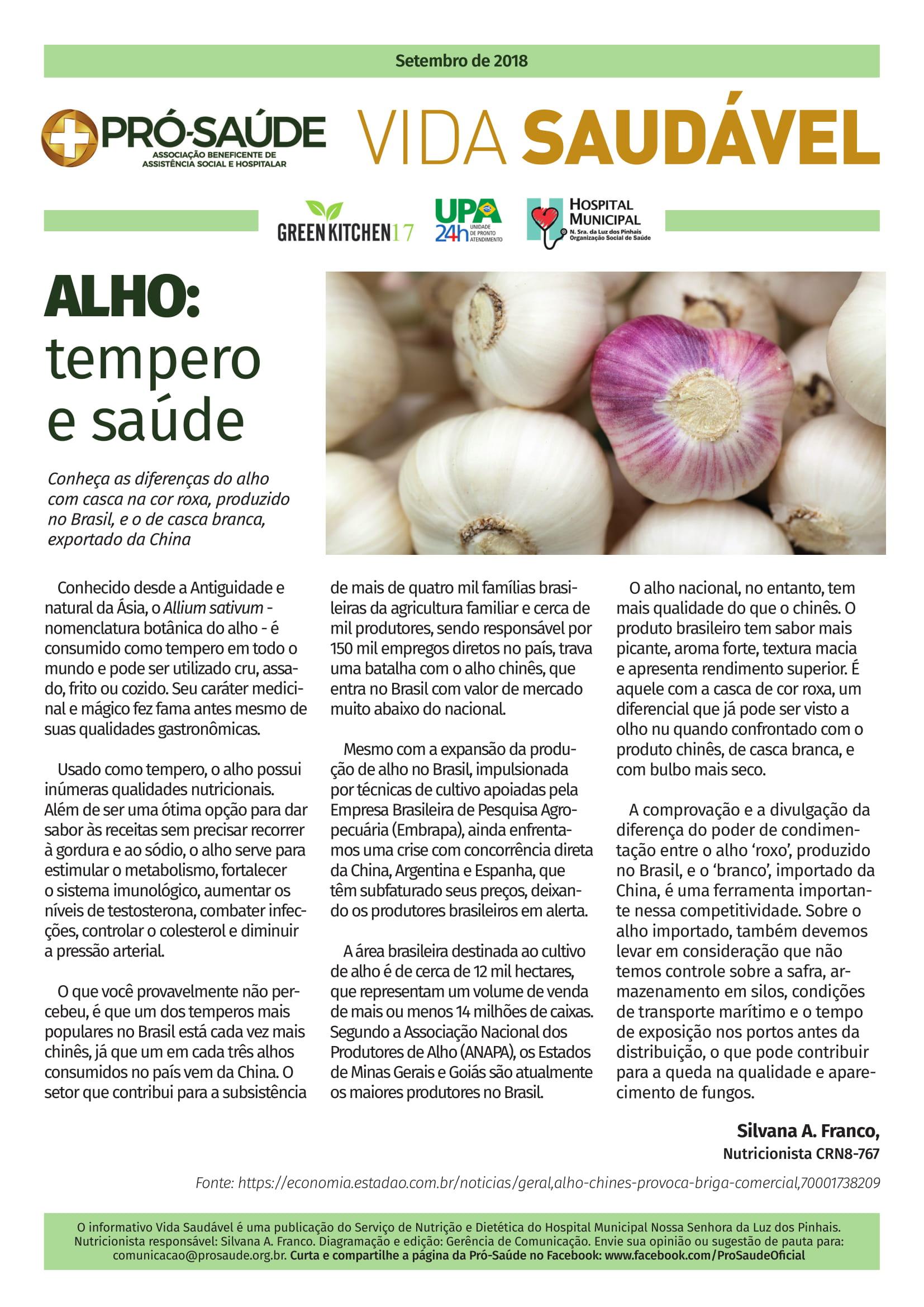 ALHO - TEMPERO E SAÚDE-1