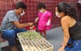 Horta hospitalar contribuirá para a produção sustentável de alimentos ofertados a crianças internadas
