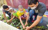 Hospital Oncológico Infantil faz a primeira colheita em sua horta hospitalar