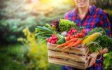 Por que consumir alimentos orgânicos e onde comprar a preço justo em São Paulo